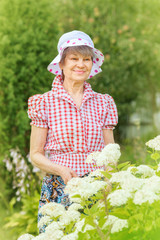 Smiling mature woman stands at bush of white hydrangea