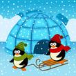 penguin igloo - vector  illustration, eps