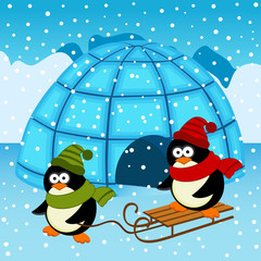 penguin igloo - vector  illustration, eps