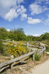 Wooden fence encircling the natural park of Carreiron