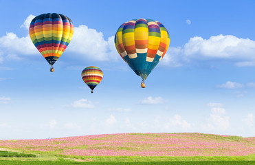 Hot air balloon over flower fields with blue sky background