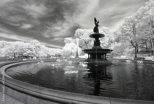 Papiers peints Jardin Infrared image of the Central Park