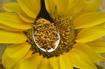 Bee pollen Pierzga Polline d'api Byebrood 蜂花粉 פולן
