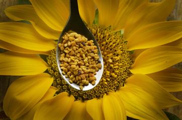 Bee pollen Bienenbrot Перга Pão de abelha Pain d'abeille