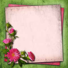 Aster flowers on vintage background