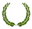 Laurel wreath - 67903620