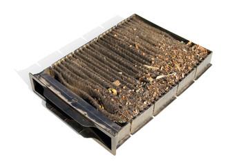 Contaminated car cabin air carbon filter