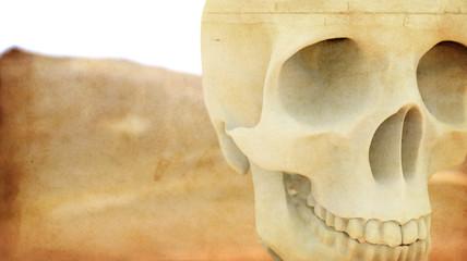 Skull Grounge