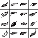 Fototapety Wings design elements vector illustration