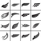 Wings design elements vector illustration