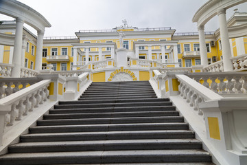 Staircase to the castle