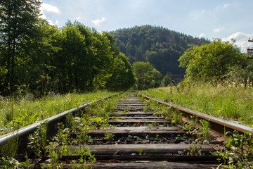 Railway track in the natural scenery.