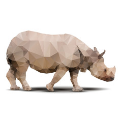 polygonal rhinoceros