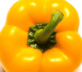 Paprika closeup