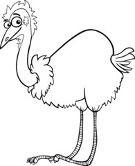 emu ostrich cartoon coloring page