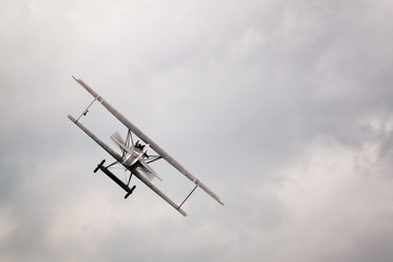 Fokker D.VII in the sky