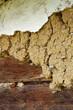 earthen plaster 2