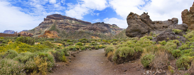 Panoramic image of the mountain on the Tenerife island
