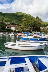 Fishing Boats in Small Marina