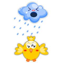 Uccello arrabbiato per la pioggia