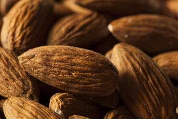 Raw Organic Brown Almonds
