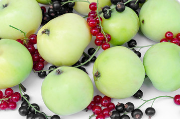 green apples with red and black currant