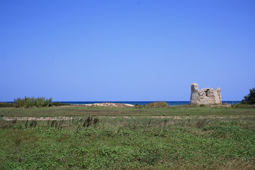 panorama of beautiful apulia coast with tower guaceto bay