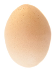 one isolated eggs
