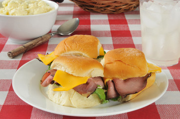 Roast beef sliders on a picnic table
