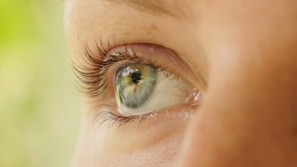 Beautiful Woman Eye. Close up. Macro.