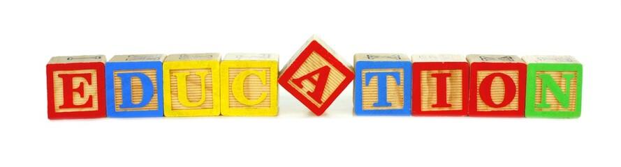 Toy wooden blocks spelling EDUCATION over white
