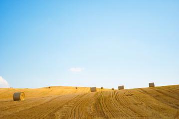 Strohballen auf einem Feld