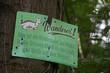 Schild Wanderer an einem Baum