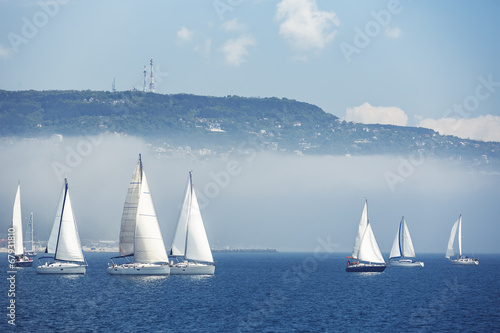 In de dag Water planten Sailing ship yachts with white sails