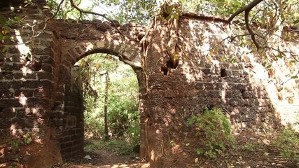 Ruins of old castle in India
