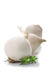 oignon blanc