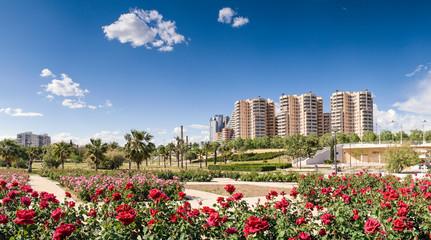 Cityscape, Valencia