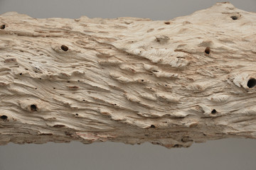 natural wood texture surface from tree trunk