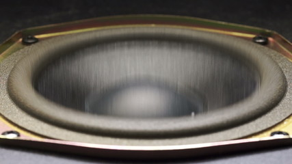 Speaker sub-woofer moving from loud music