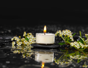 Branch white flower with leaf, candle on wet background