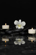 White orchid with two candle and therapy stones