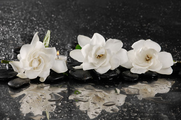 spa concept –gardenia flower with zen stone