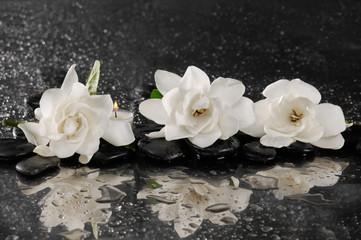 spa concept –gardenia flower with zen stone