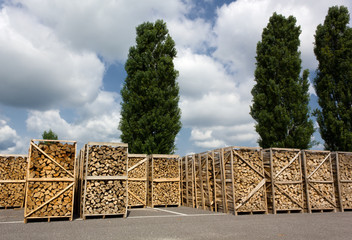 Stacks of Wood in a Service Area