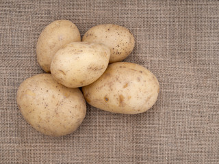 Potatoes on rustic hessian, burlap fabric background.