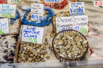 Fresh Oysters and Clams on Sale on a Market Stall