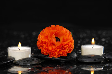 Red ranunculus flower with white candle and therapy stones