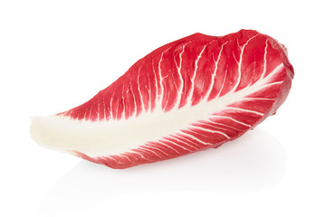 Radicchio leaf, red salad on white, clipping path