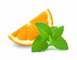 canvas print picture - orange slice AND MINT