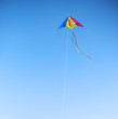 Kite against the blue sky